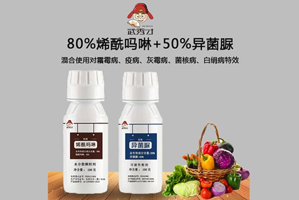 80%烯酰吗啉+50%异菌脲