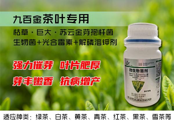 九百金茶叶专用微生物菌剂、防冻剂