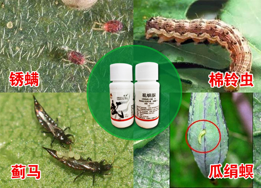 武秀才虱螨脲主要防治哪些害虫?