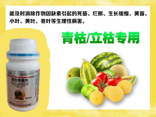 七百金青枯/立枯专用微生物菌剂